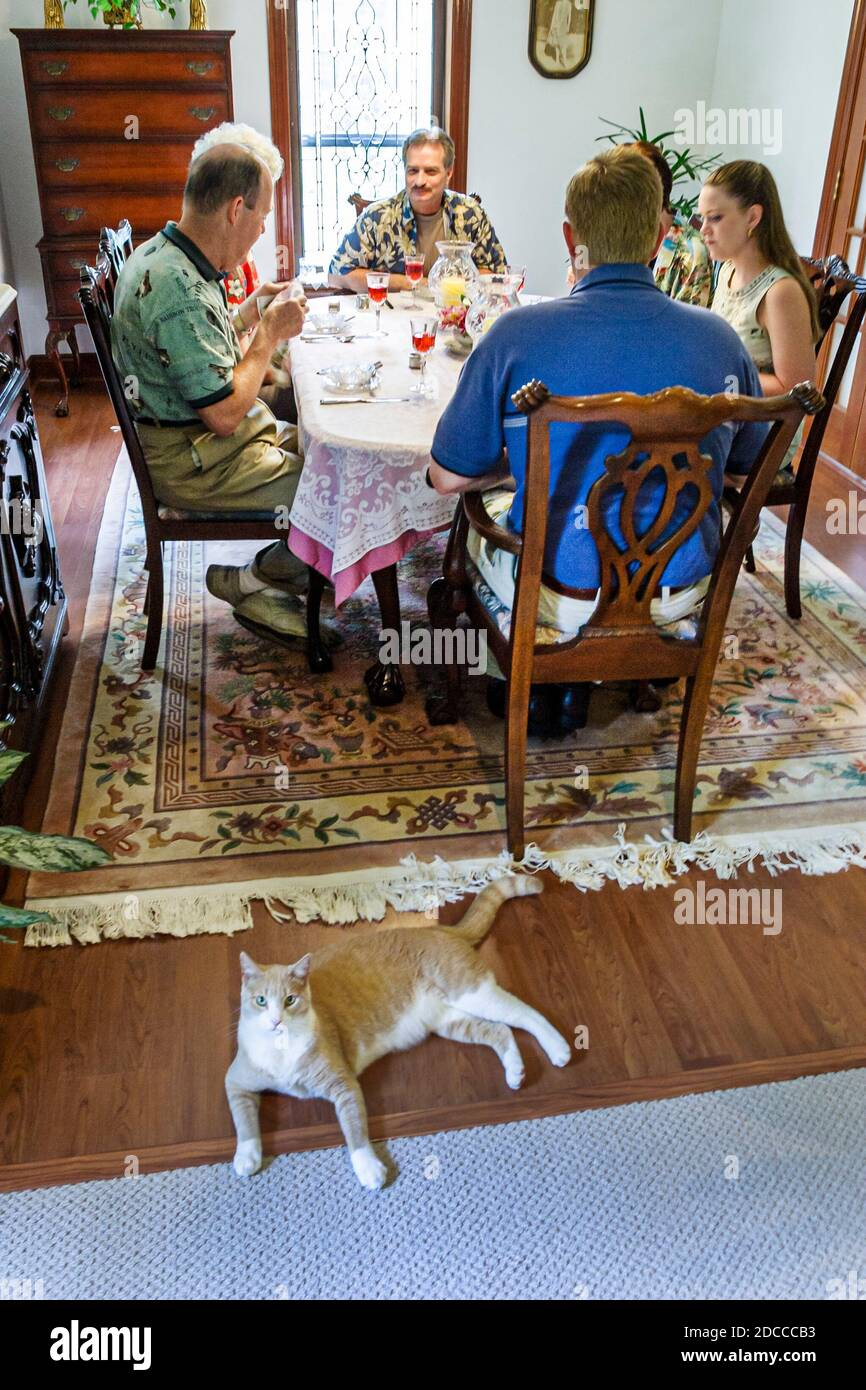 Louisiana, South, St. Tammany Parish, Slidell, Garden Guest House Bed and Breakfast, lodging, home away from home, lodging, sightseeing visitors trave Stock Photo