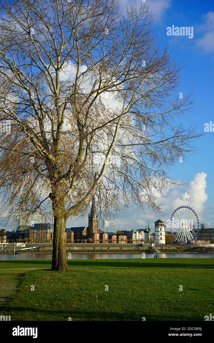 View across Rhine river from the river bank of Oberkassel district to Old Town, with Ferris Wheel and the landmarks Lambertus Church and Castle Tower. Stock Photo