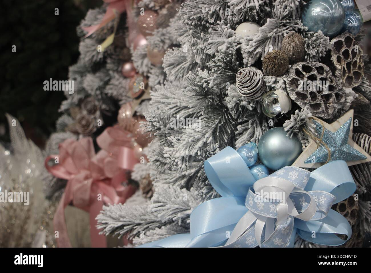 Decorated Christmas Tree In Baby Blue And Dusty Rose Colors New Year Scene Selective Focus Stock Photo Alamy