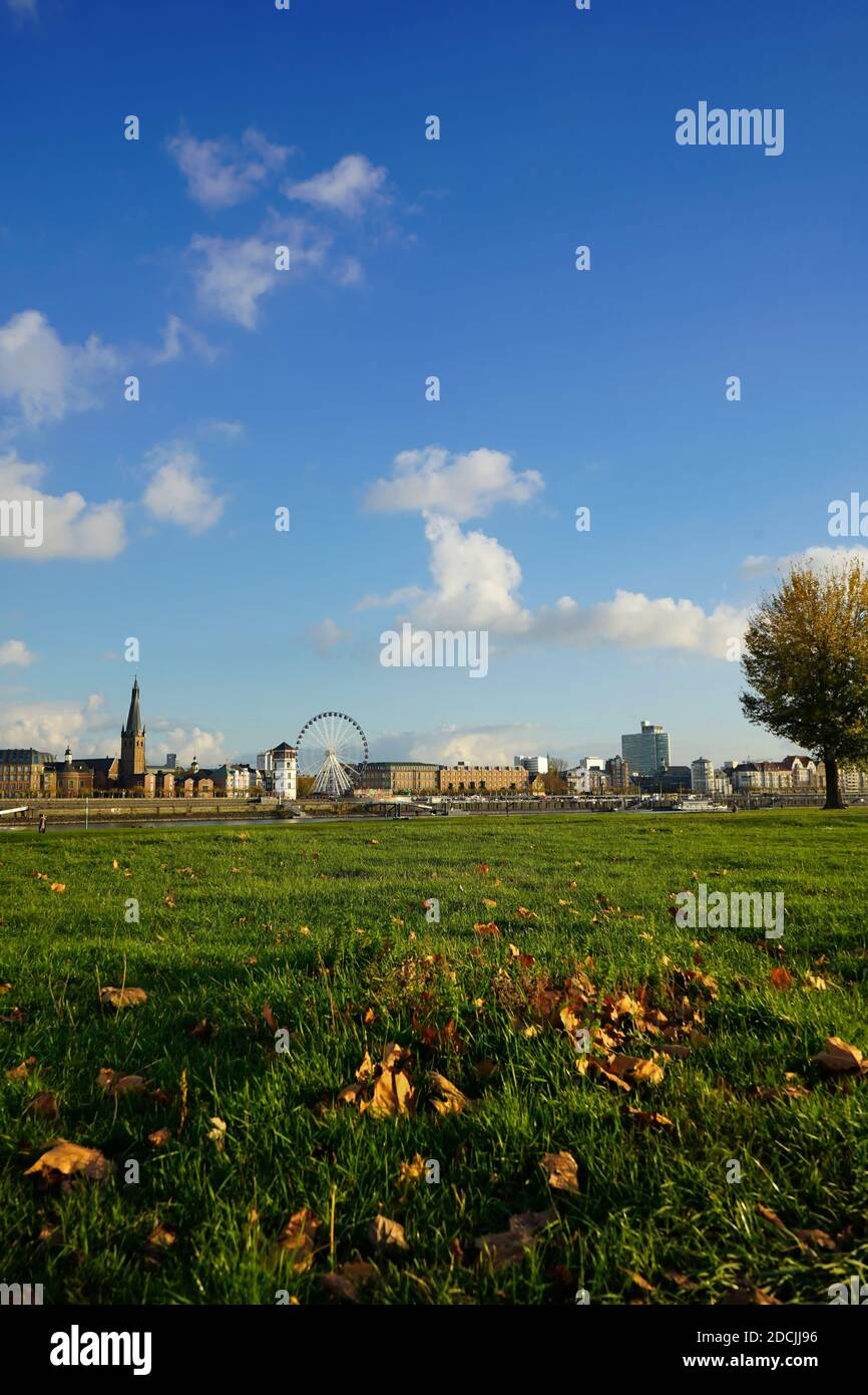 Wide-angle view from the river bank of the district of Oberkassel to Old Town across Rhine river. Meadow with autumn leaves in the foreground. Stock Photo
