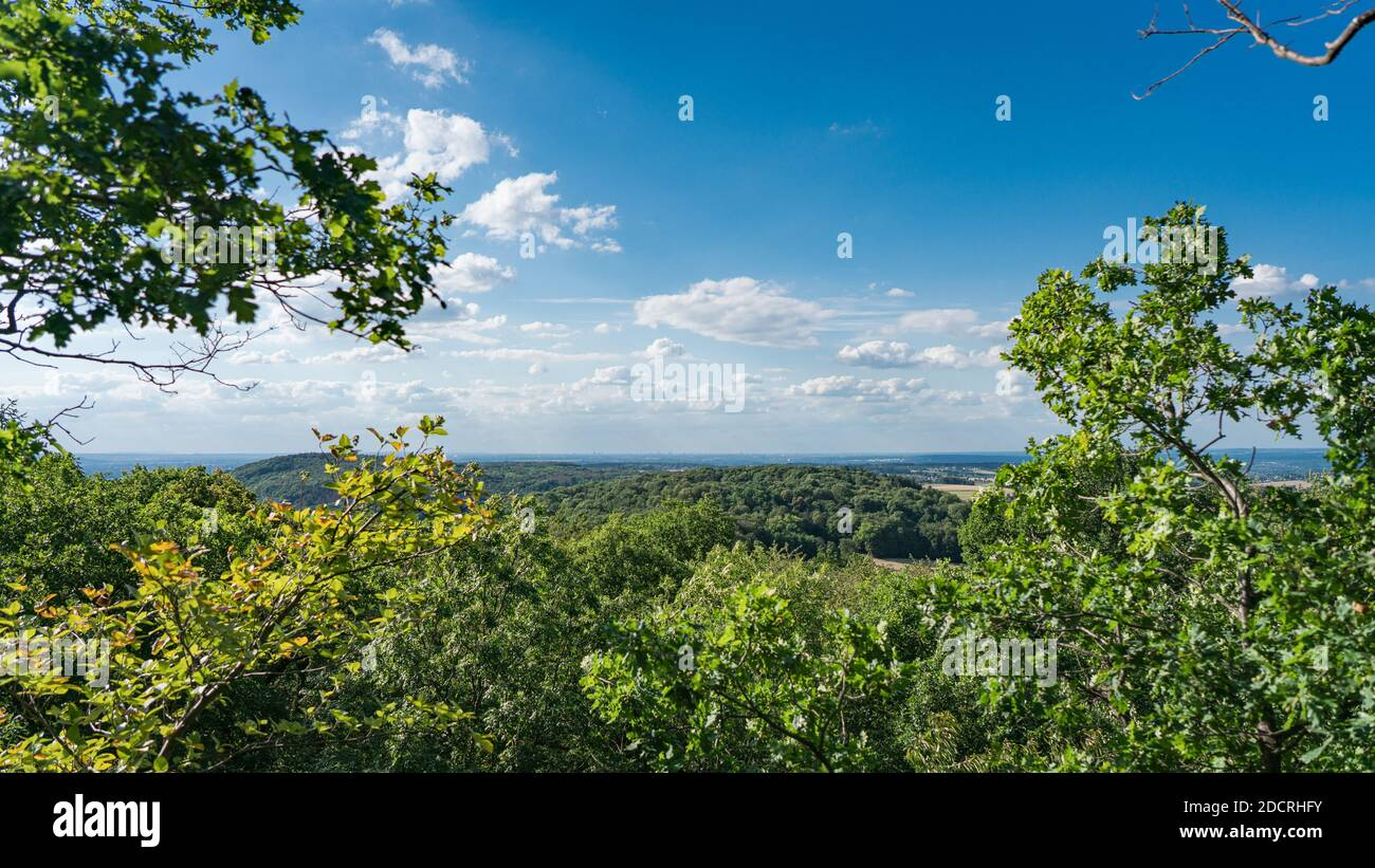 View from the top of the rock wall of the Stenzelberg over the wooded area far to Cologne in July. Stock Photo