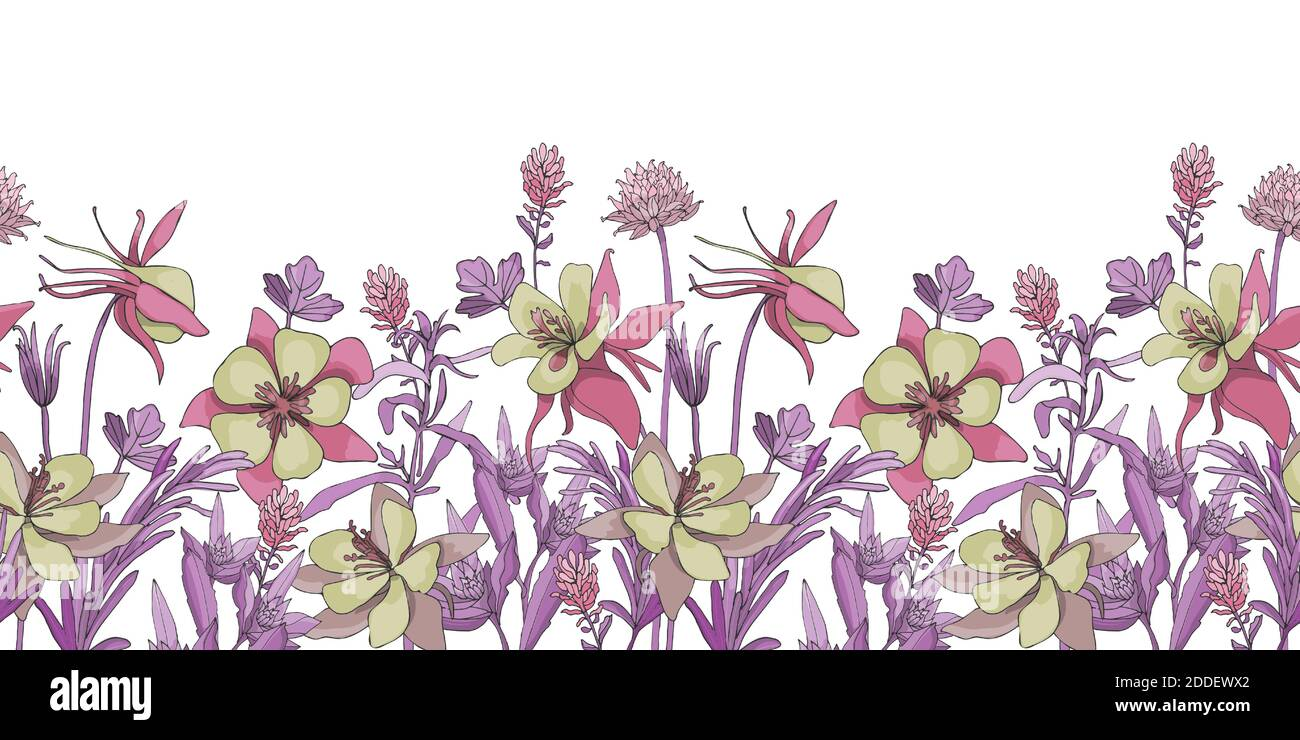Vector floral seamless border. Flower background. Seamless pattern. Stock Vector