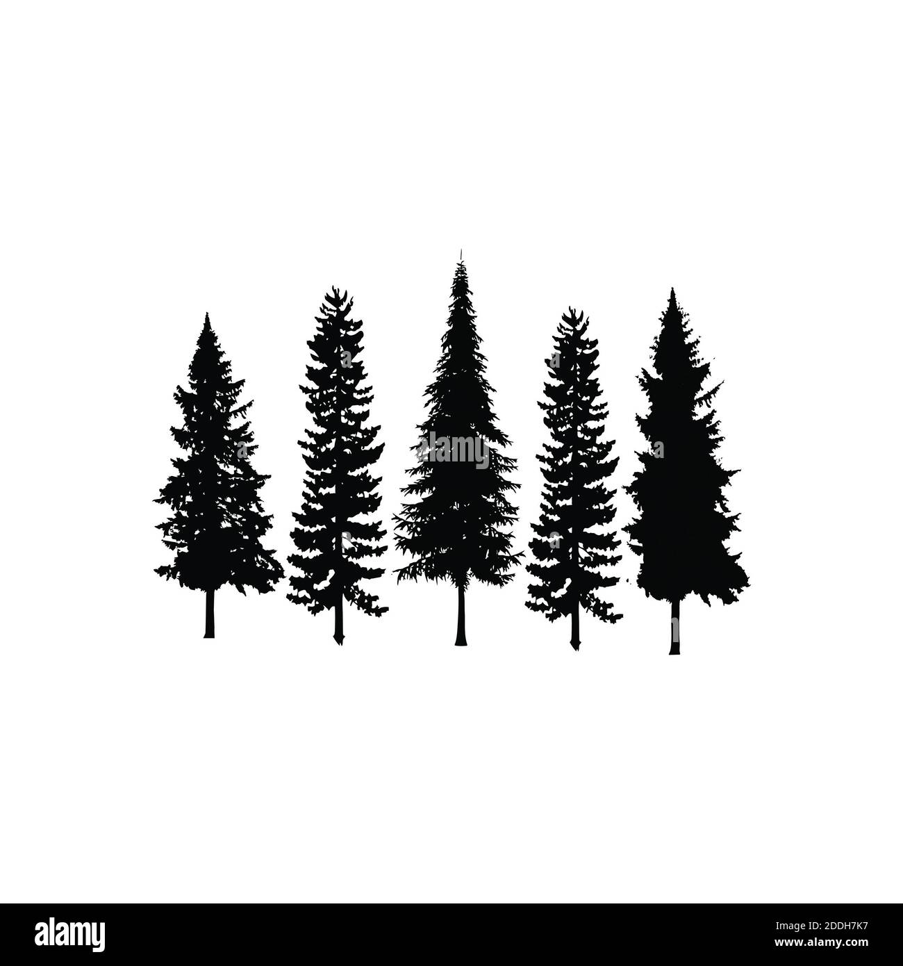 Cypress Tree Silhouette High Resolution Stock Photography And Images Alamy