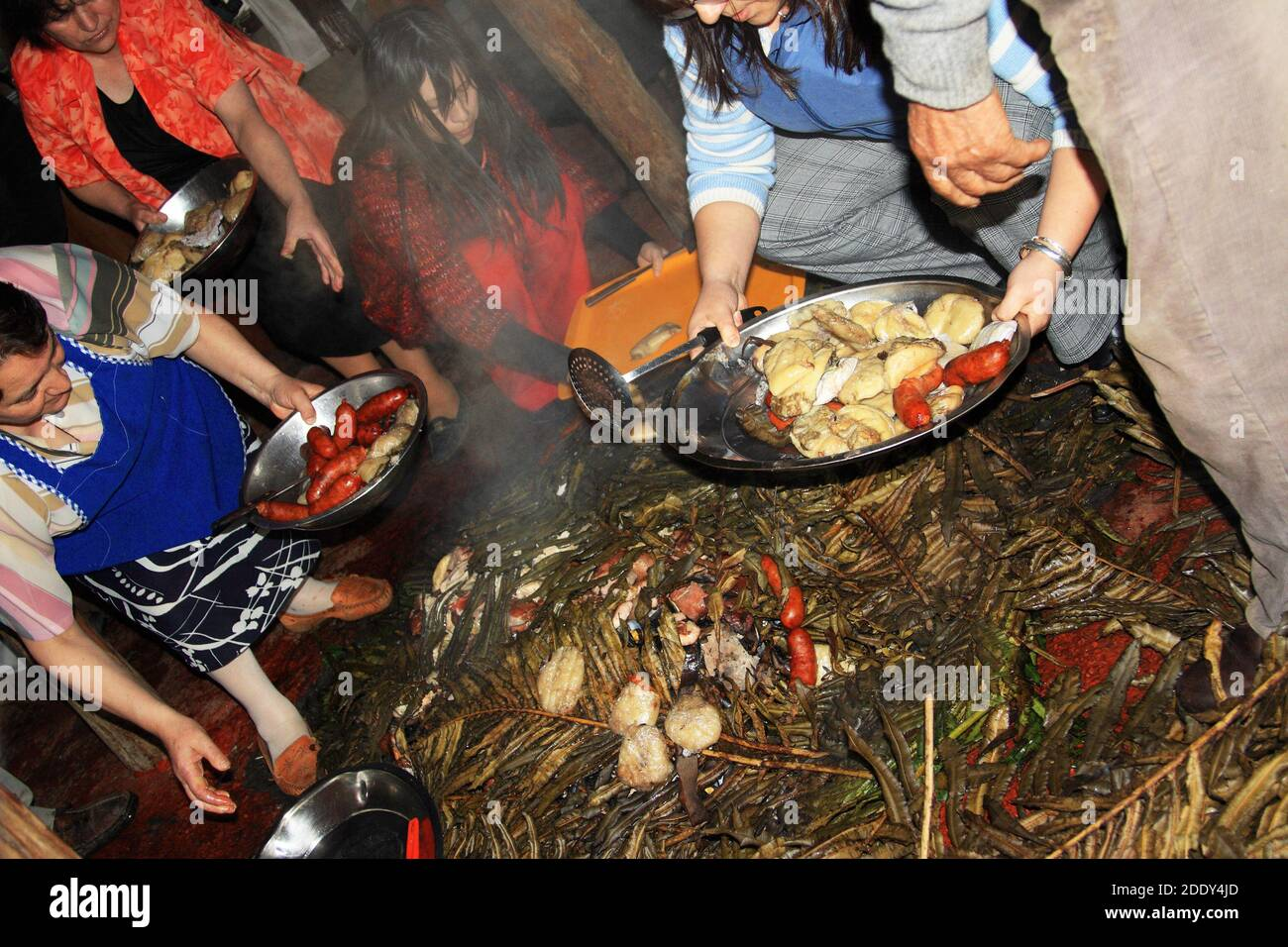Preparing the ingredients of a curanto, a traditional meal cooked in a pit on the island of Chiloe, Chile Stock Photo