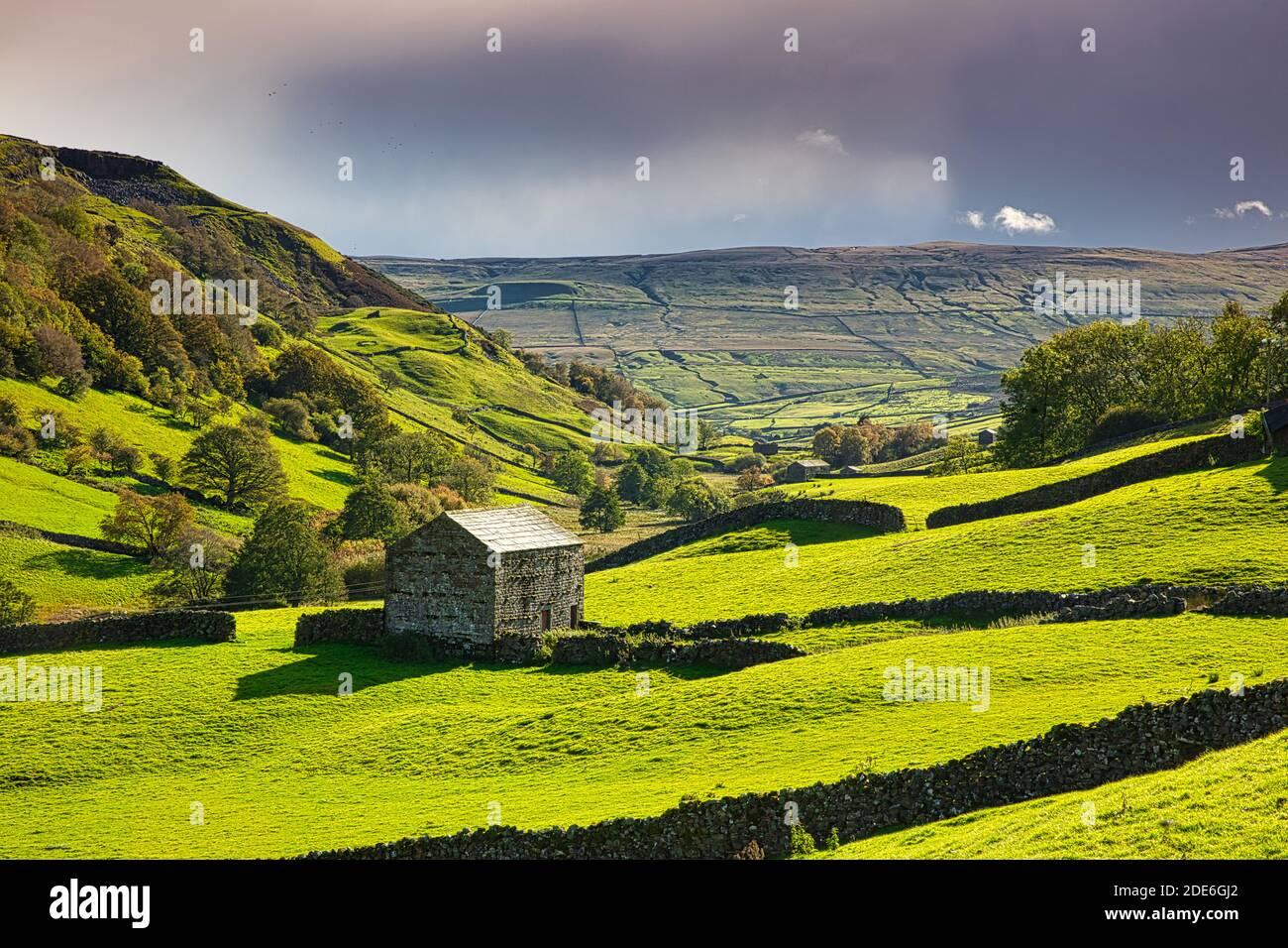 Hay Barns in Upper Swaledale in Autumn, Yorkshire Dales, England, UK Stock Photo