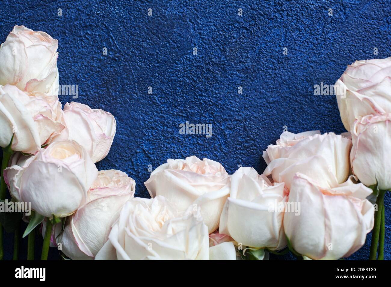 Blue Roses Bouquet High Resolution Stock Photography And Images Alamy