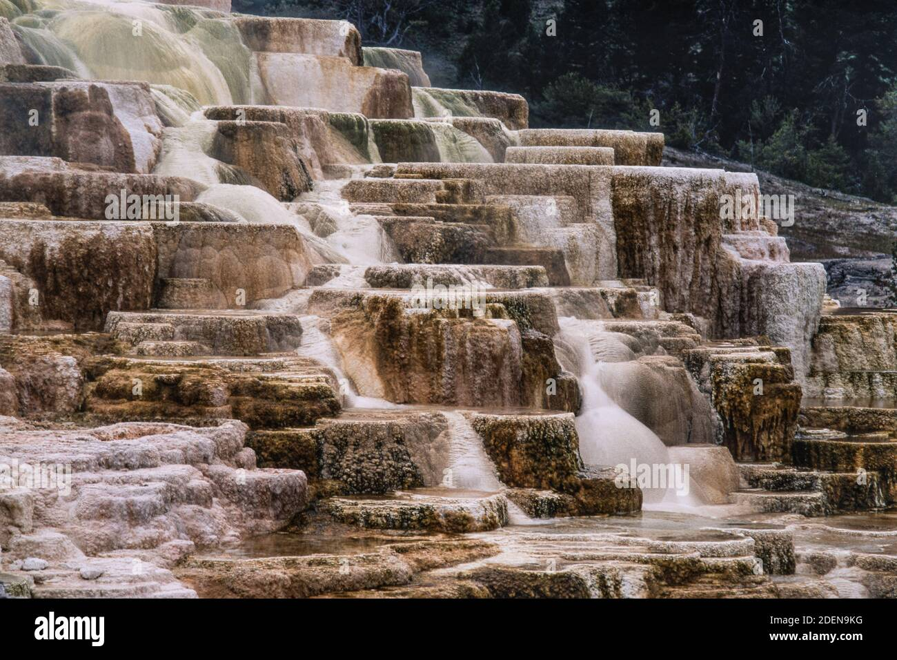 Colorful mineral formations of Palette Spring in the Mammoth Hot Springs in Yellowstone National Park in Wyoming, USA. Stock Photo