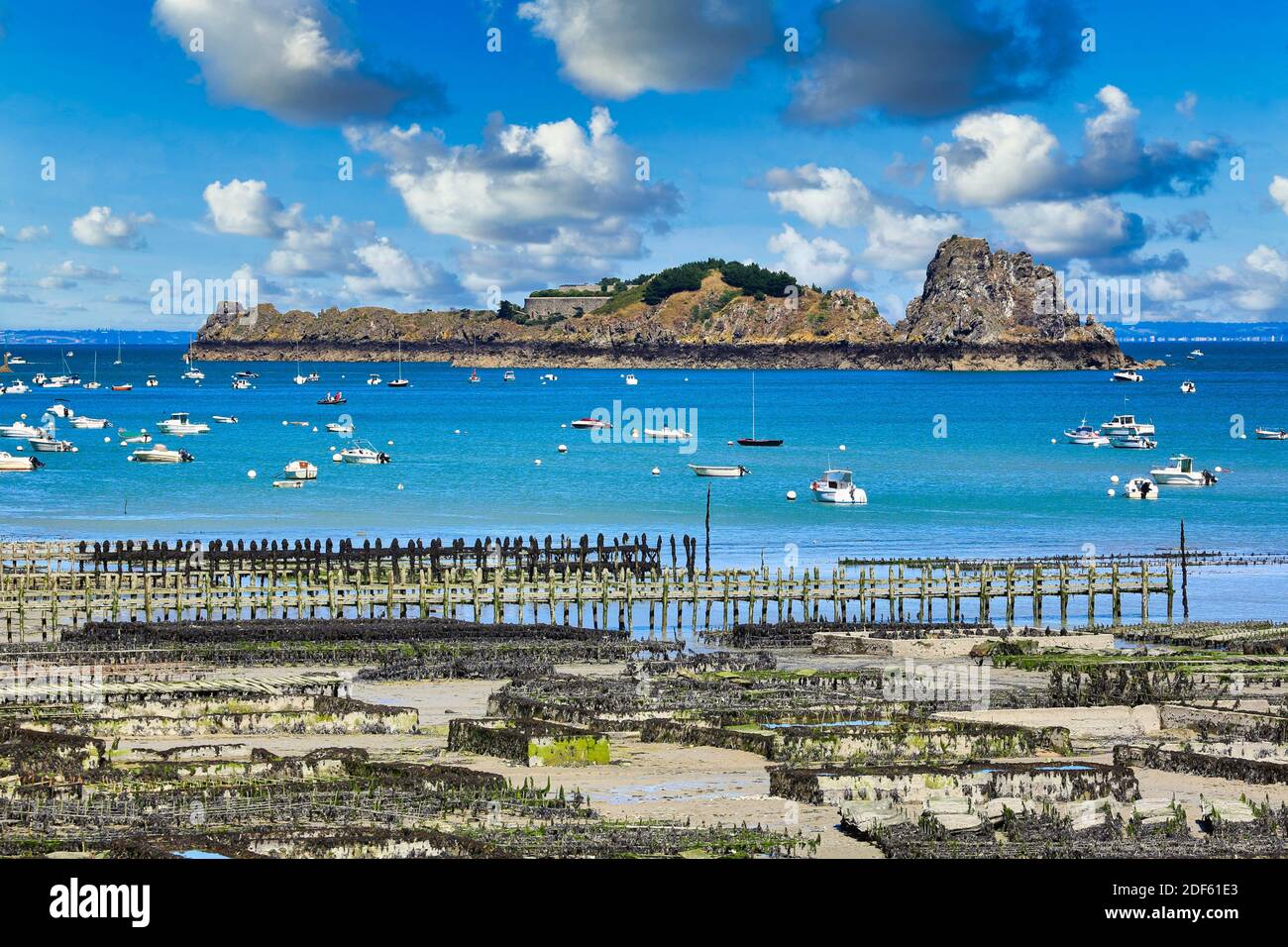 Oyster farming, Cancale, Brittany, Bretagne, France Stock Photo