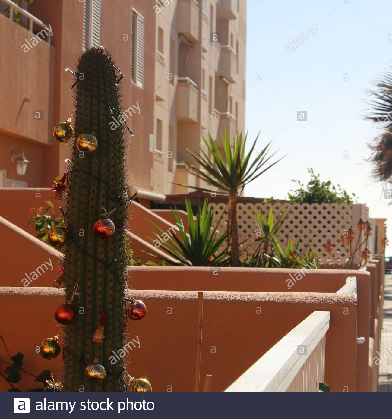 Alternative Christmas Tree High Resolution Stock Photography And Images Alamy