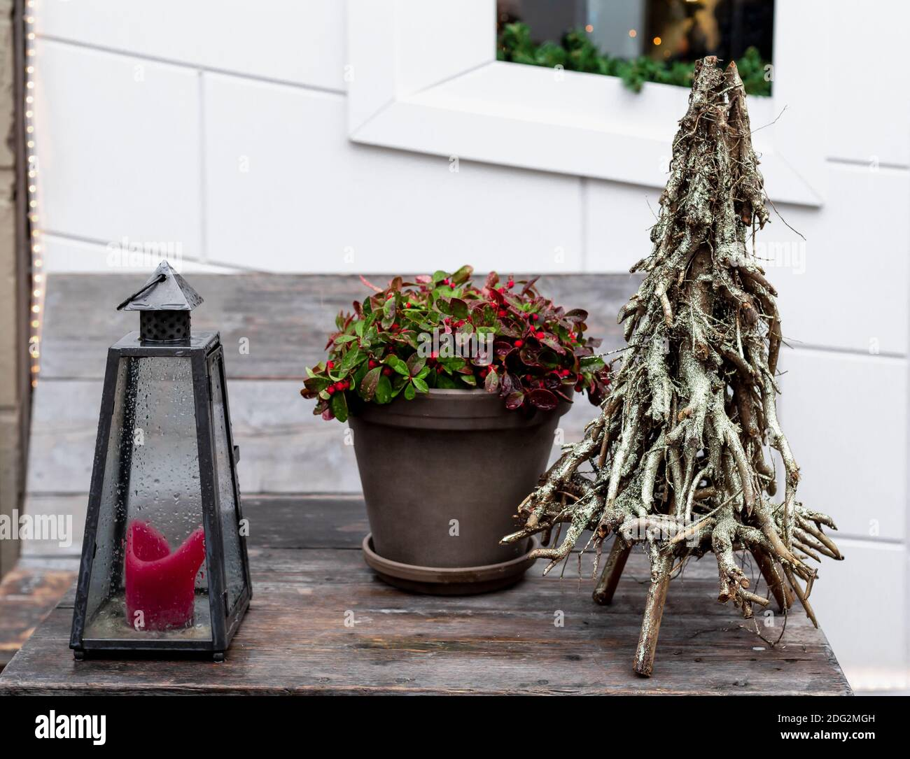 Christmas Red Berries Plant In Pot Creative Alternative Christmas Tree Made From Tree Branches And Street Candle Lamp On Wooden Table Outsiade Retro Stock Photo Alamy