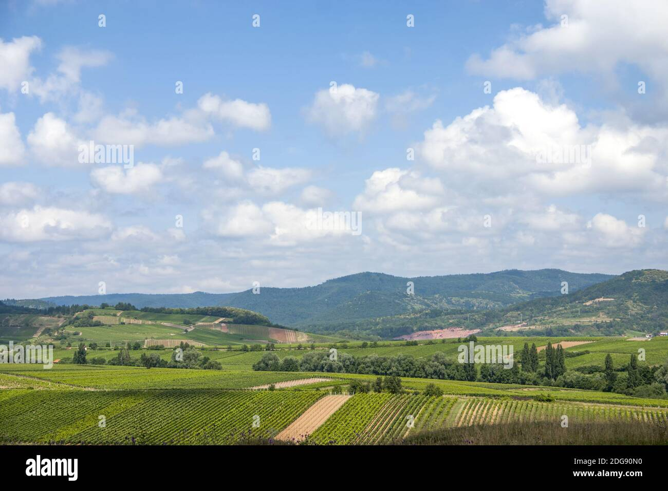 View of the Haardtrand Stock Photo