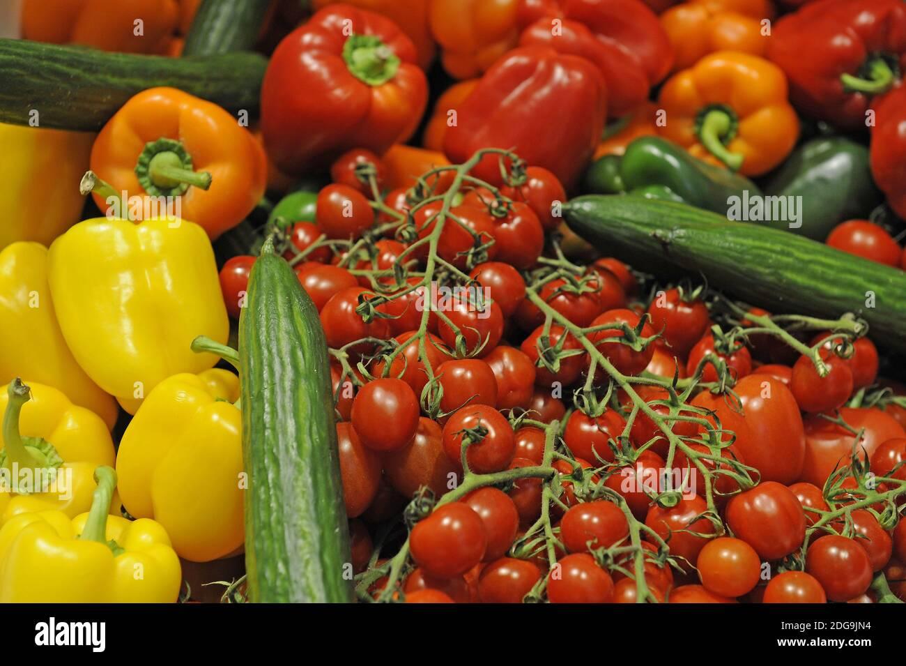 Bunter Gemüsekorb mit roten Paprika, Strauchtomaten, grünen Gurken, gelben Paprika, Stock Photo