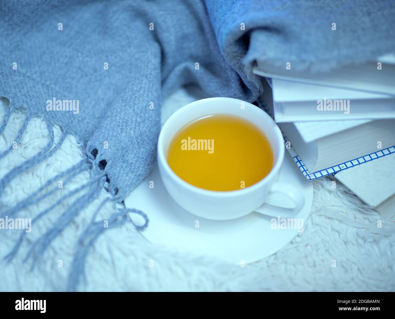 A cup of green tea, books and a woolen warm knitted blanket on the bed. Time for reading and tea at home Stock Photo