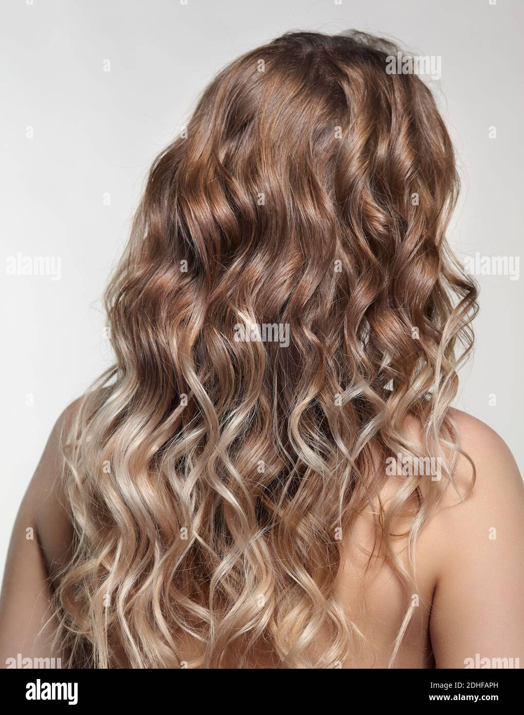Woman from backside on gray background. Female with curly hair Stock Photo