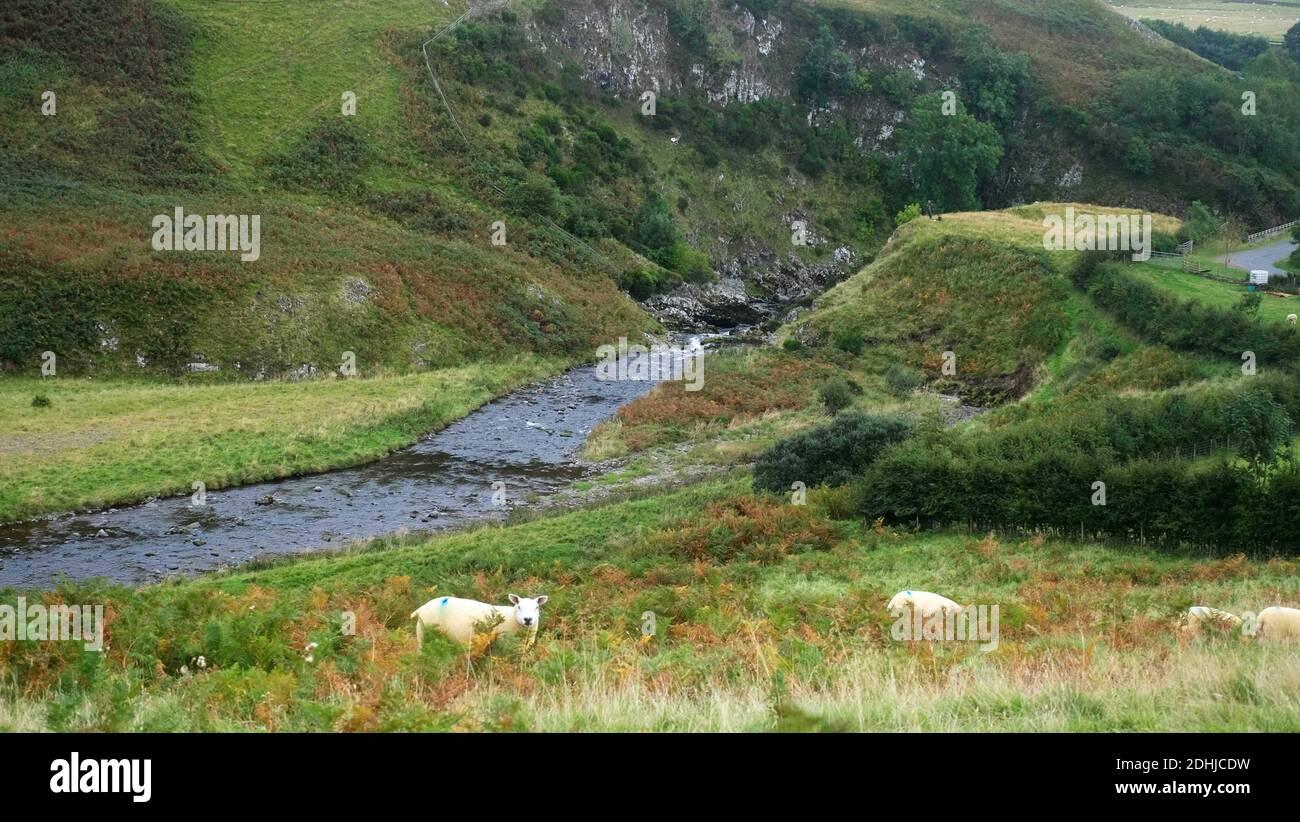 The River Coquet runs through a deep gorge at Shillmoor.Saturday 3rd October 2020. Stock Photo