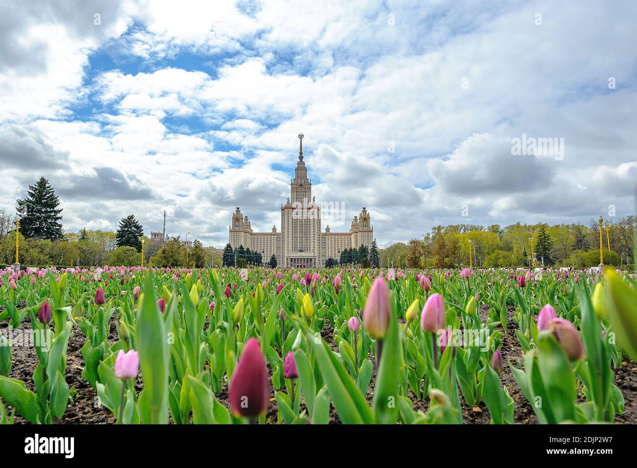 Lomonosov Moscow State University (MSU). It is a coeducational and public research university, founded on 1755 Stock Photo
