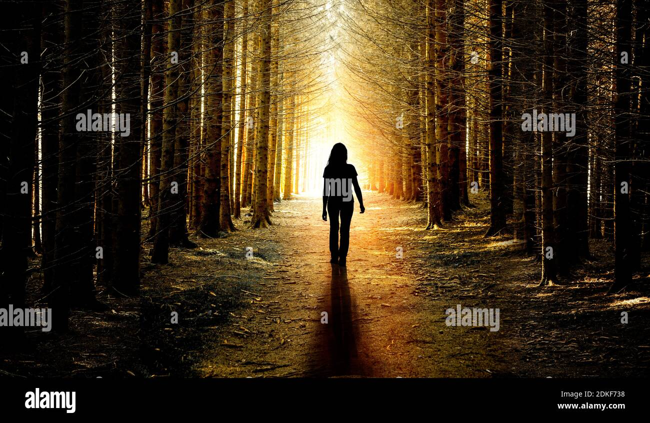 Woman on a forest path - from dark to light Stock Photo