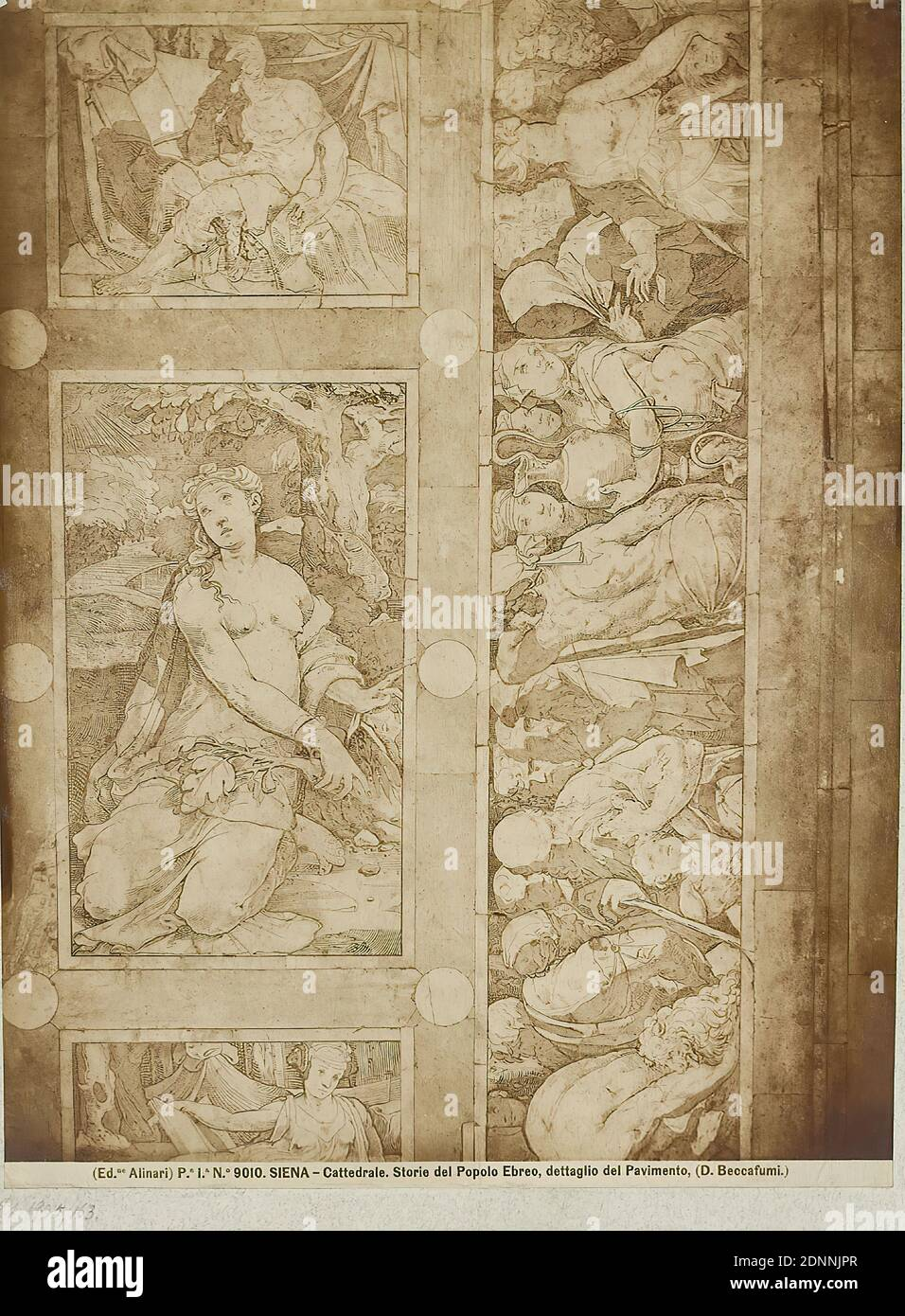 Domenico Beccafumi: Stories of the People of Israel, detail of the floor in the Cathedral of Siena, albumin paper, black and white positive process, image size: height: 25,50 cm; width: 19,10 cm, SIENA - Cattedrale. Storie del Popolo Ebreo, dettaglio del Pavimento. (D. Beccafumi.), Old Testament, floor (architecture), art Stock Photo