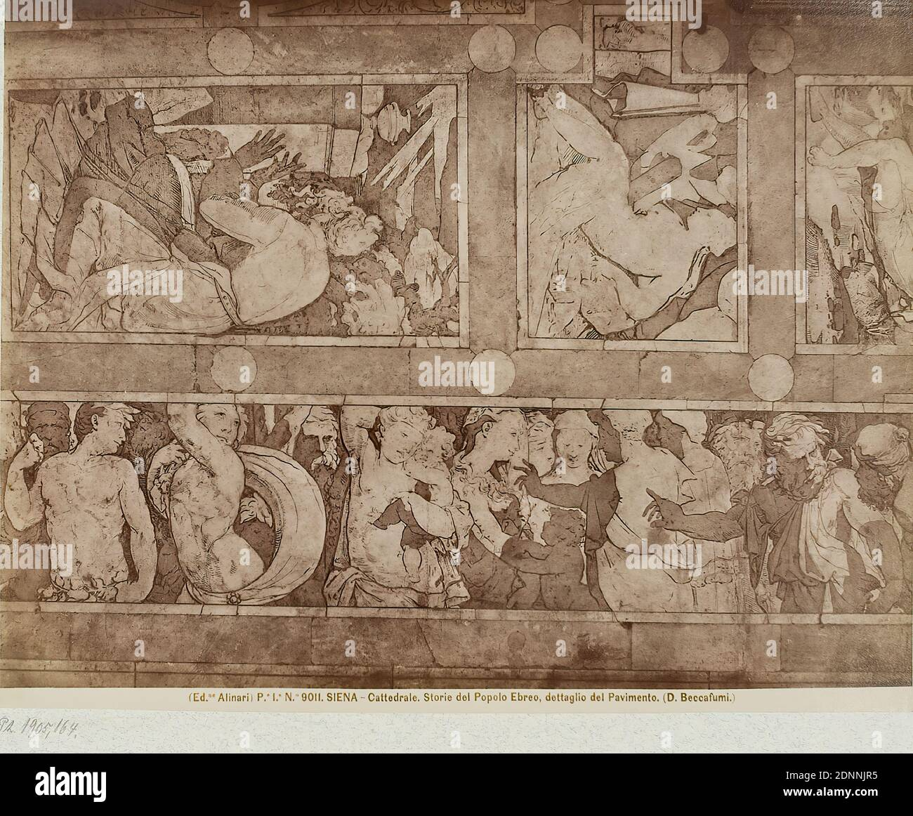 Domenico Beccafumi: Stories of the People of Israel, detail of the floor in the cathedral of Siena, albumin paper, black and white positive process, image size: height: 19.3 cm; width: 24.9 cm, SIENA - Cattedrale. Storie del Popolo Ebreo, dettaglio del Pavimento. (D. Beccafumi.), Old Testament, floor (architecture), art Stock Photo