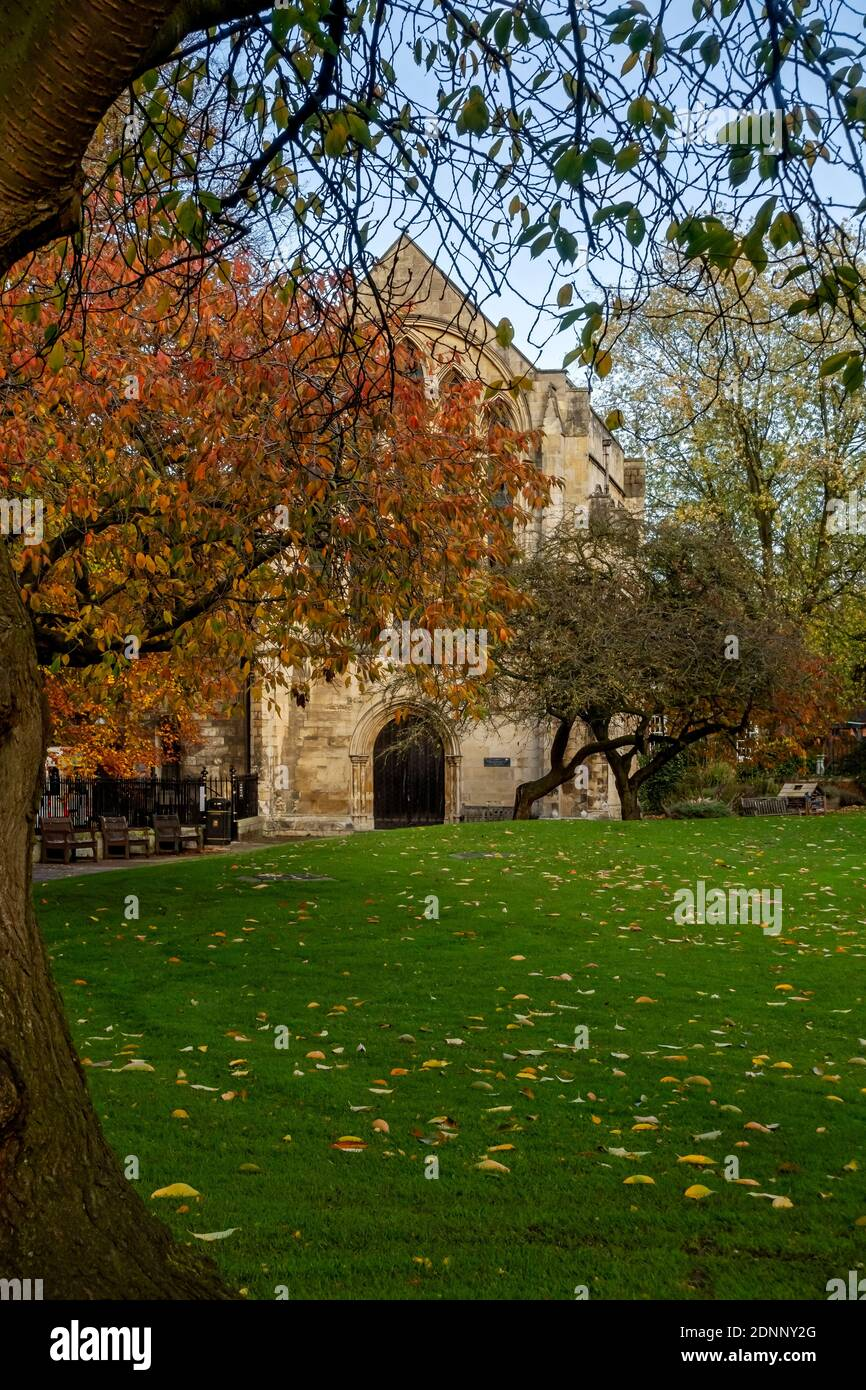 Dean's Park and Minster Library in autumn York North Yorkshire England UK United Kingdom GB Great Britain Stock Photo