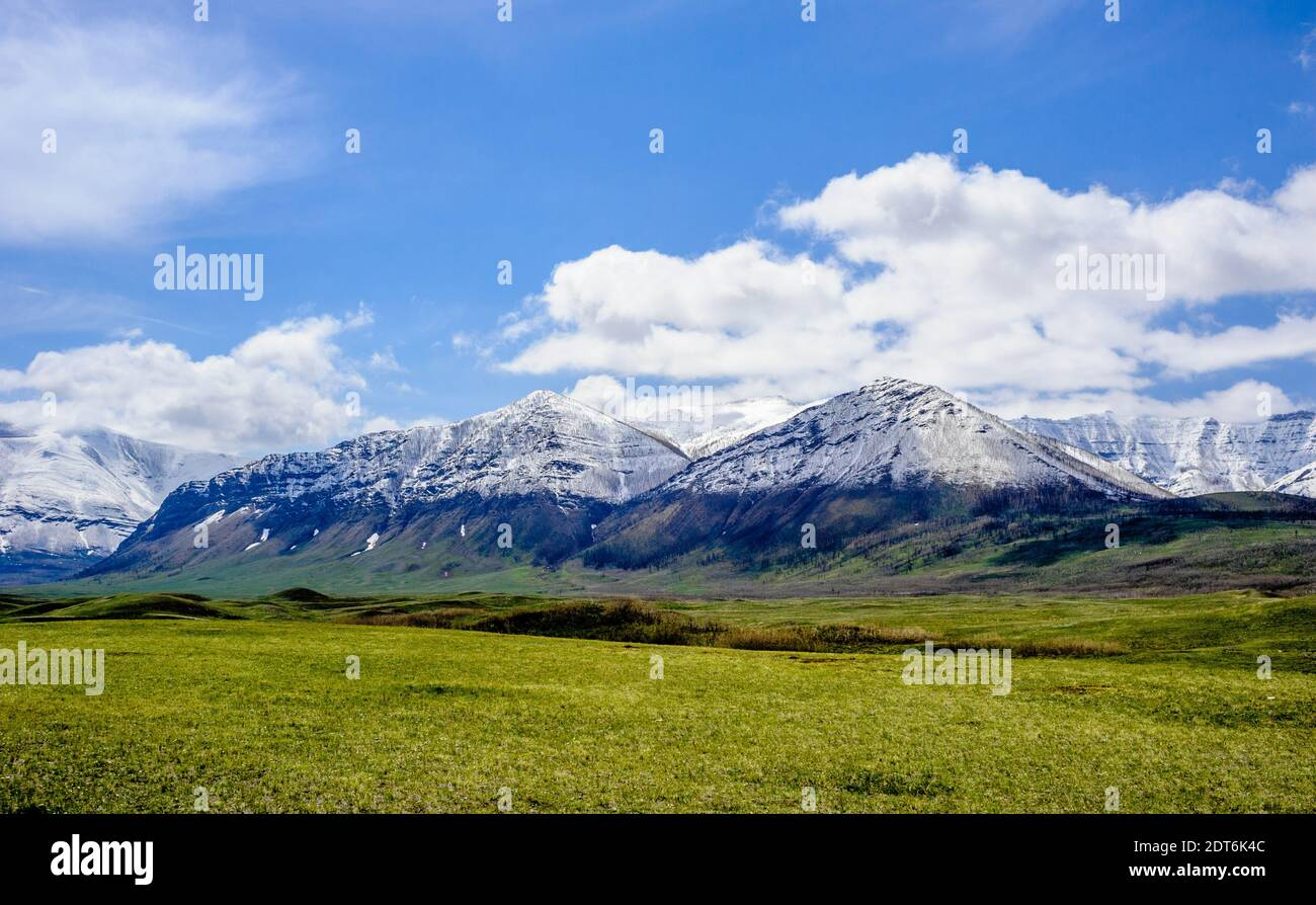 Snow line on mountains ending at prairie grass under blue sky and clouds, near Waterton Lakes, Alberta, Canada. Stock Photo