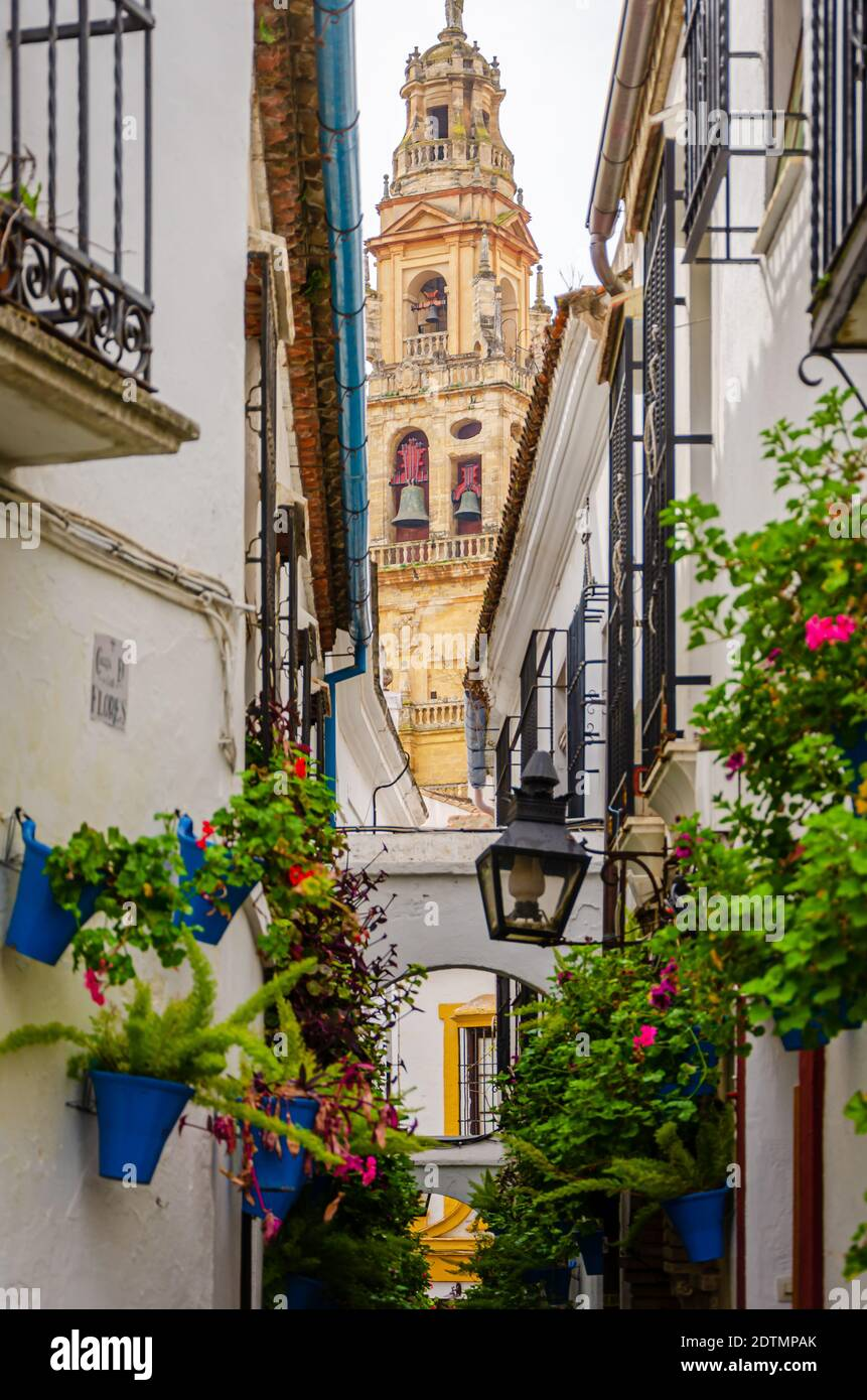 Calleja de las Flores, with the Great Cathedral in the background. Cordoba, Spain Stock Photo