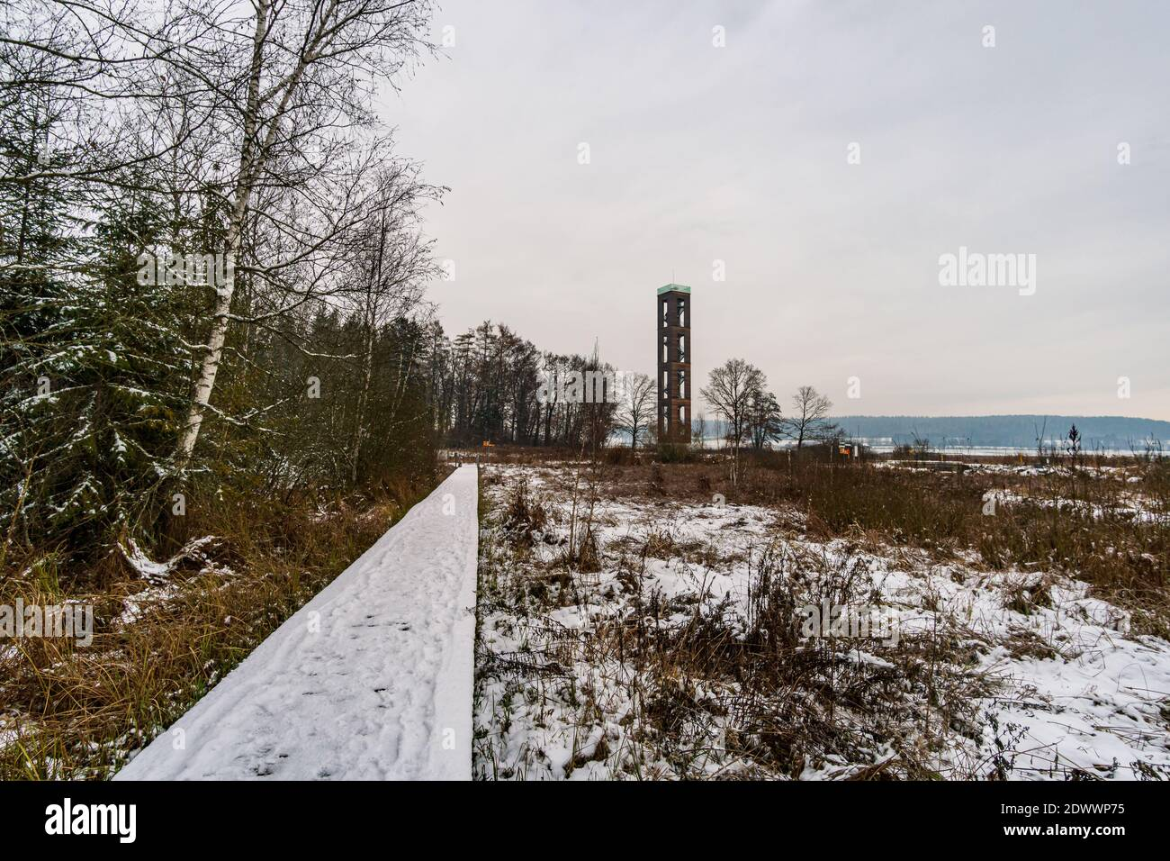 Winter hike through the Pfrunger Ried to the Bannwald Tower near Ostrach in Upper Swabia Stock Photo