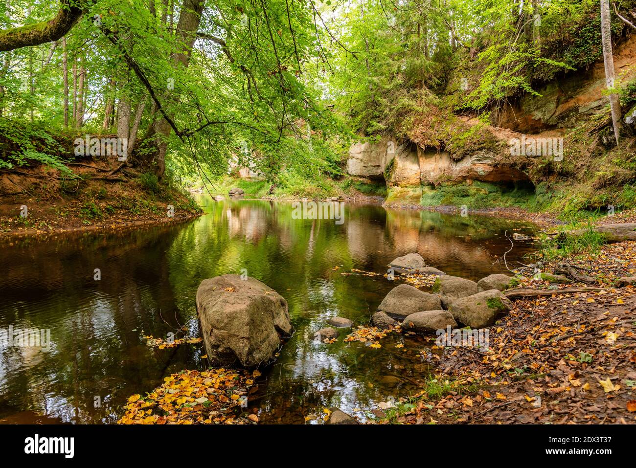 surrounded by forest, the steep bank of the river with the calm river water flowing past, in which the surrounding natural beauty can be seen as a ref Stock Photo