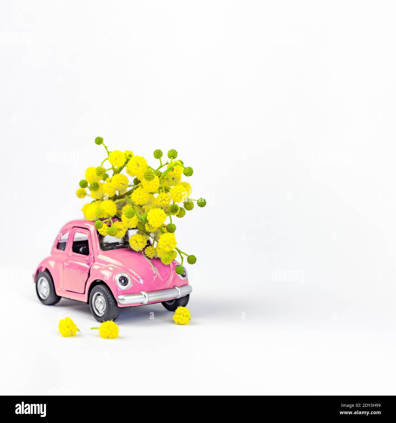 Moscow, Russia - February 23, 2019: 8 March International Women's Day card with toy model retro car delivering bouquet of mimosa flowers on white background. Valentine's day, Flower delivery concept Stock Photo