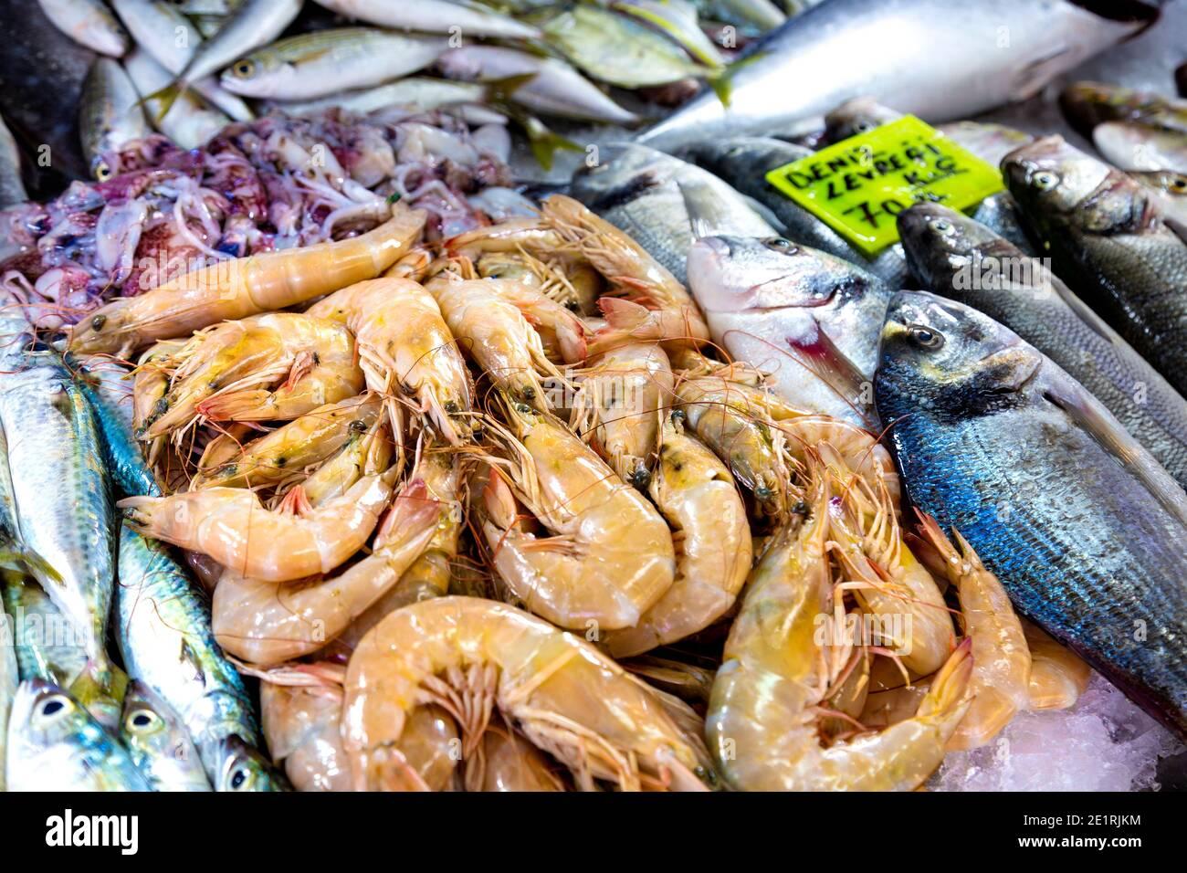 Fresh shrimp at the Fish Market in Fethiye, Turkish Riviera, Turkey Stock Photo