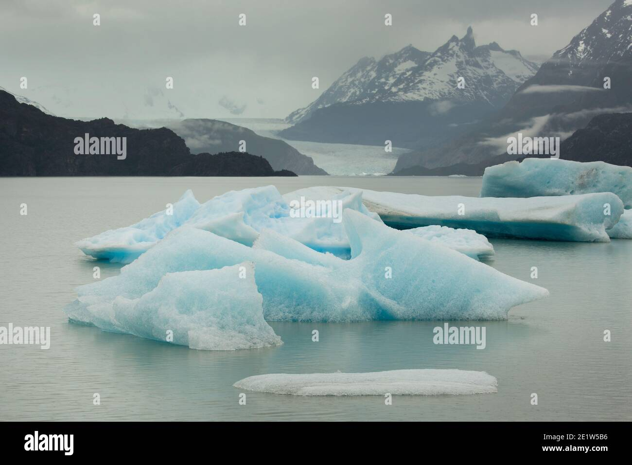 Icebergs calved from Glacier Grey float in the waters of Lago Grey, with the jagged peaks of Torres del Paine behind, Patagonia, Chile Stock Photo