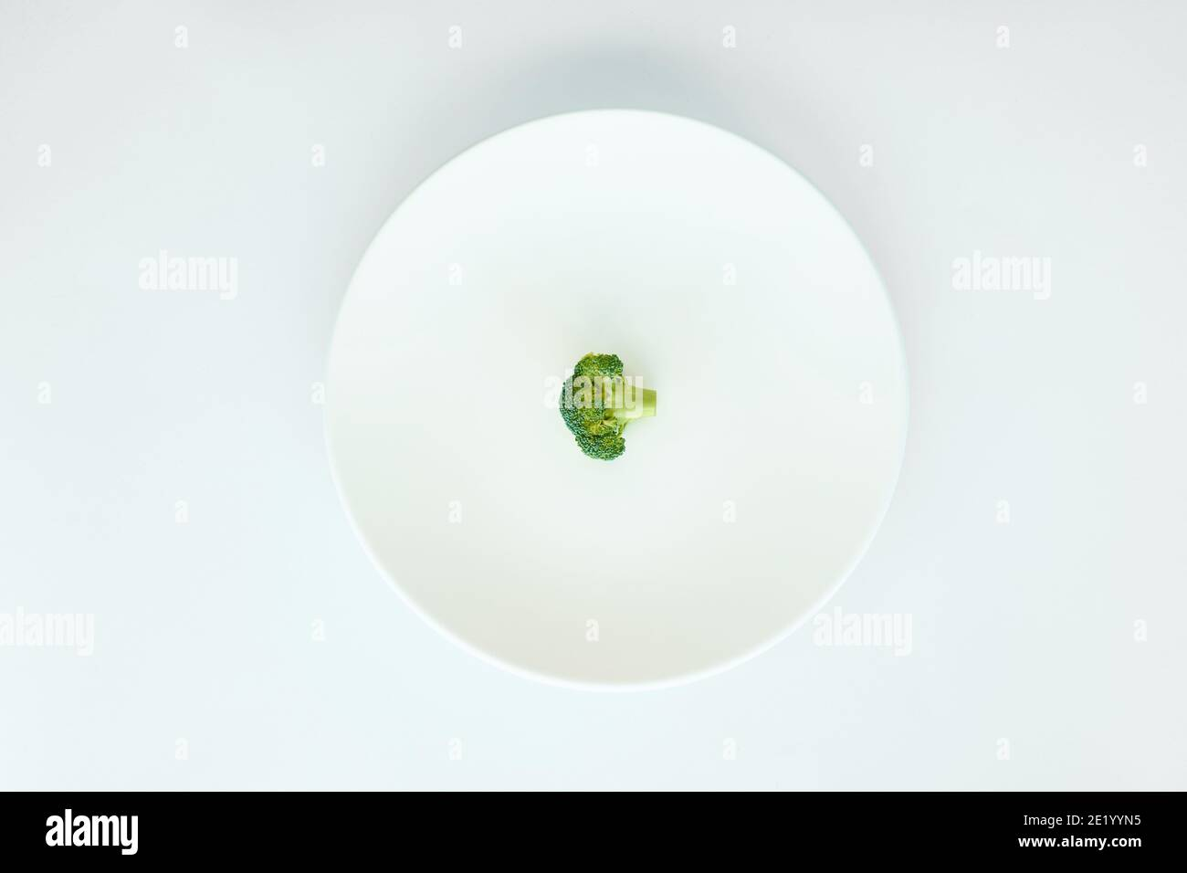 piece of broccoli isolated in a white plate on a white background Stock Photo
