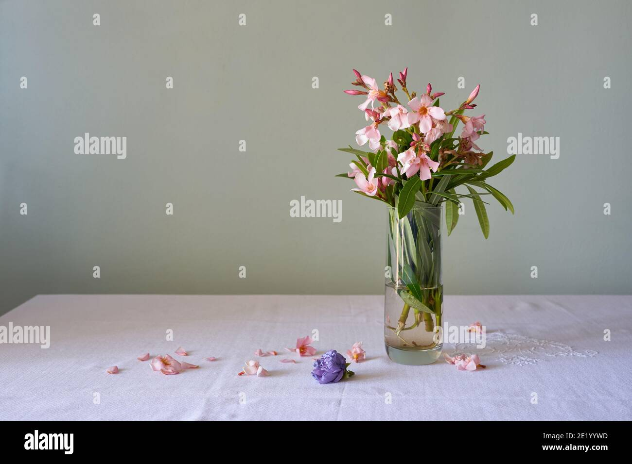 bouquet of flowers in glass with water, fallen oleanders Stock Photo