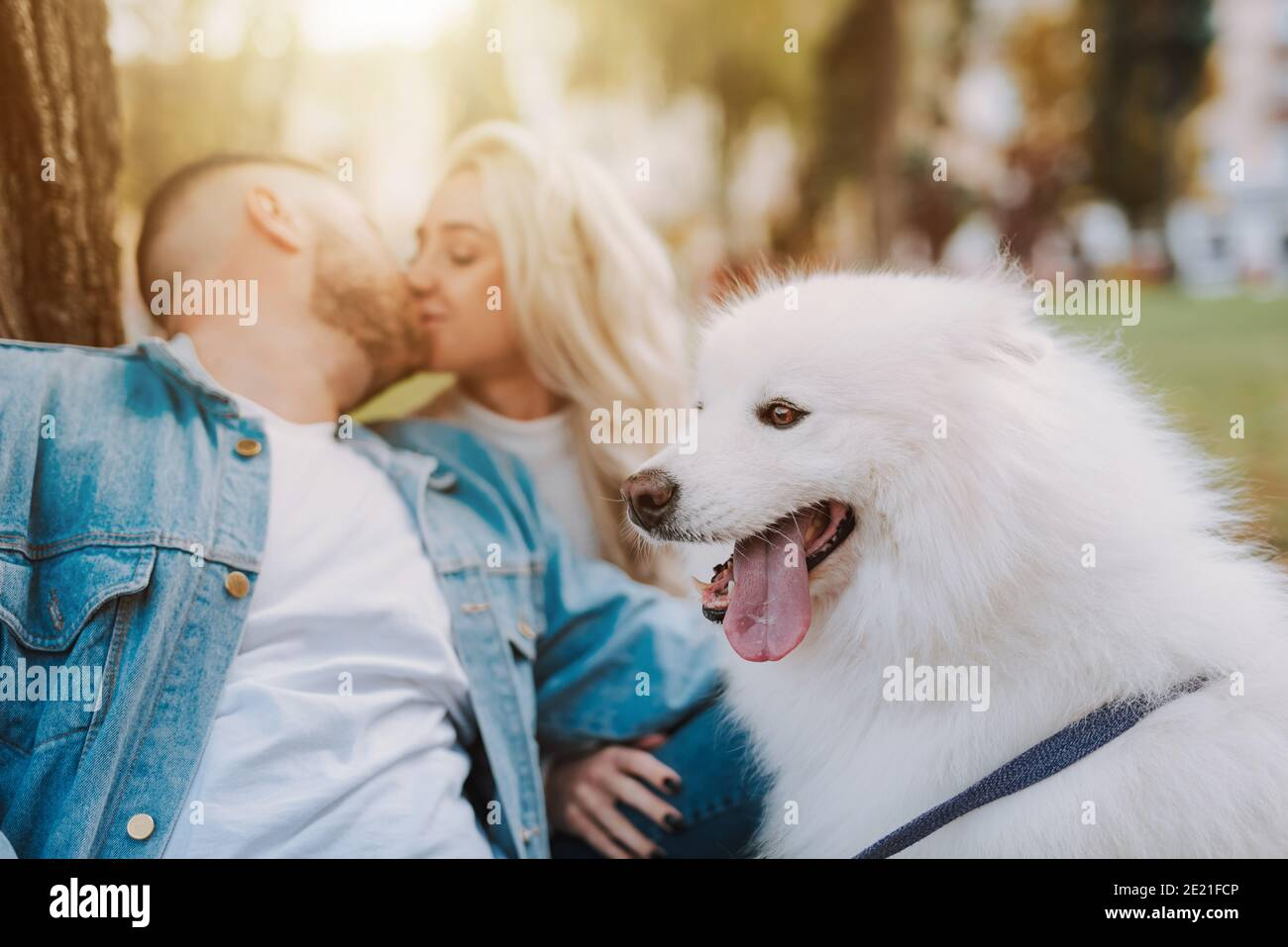 Close up of young female and male with white furry puppy are kissing while sitting under tree in autumn park Stock Photo
