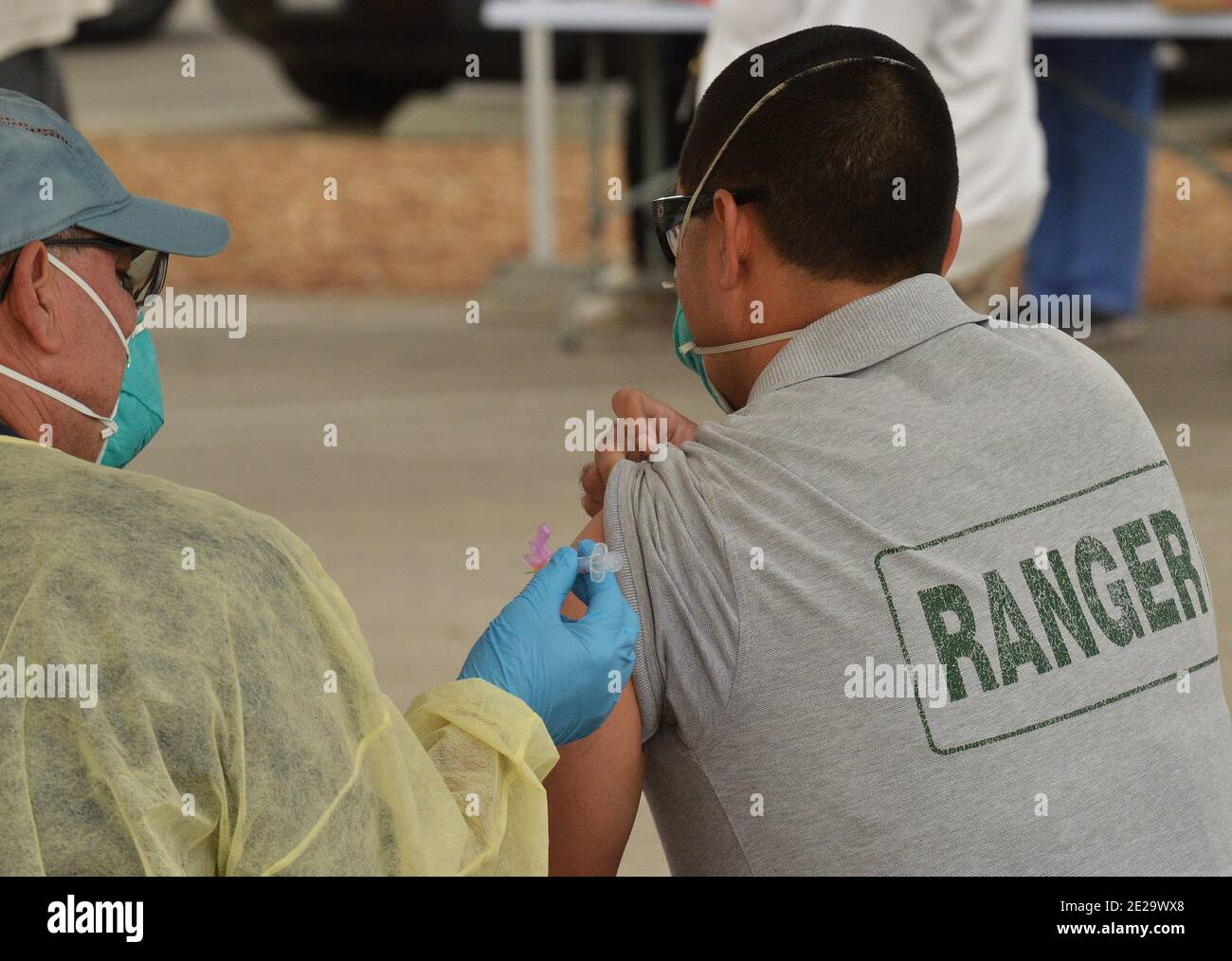 Los Angeles, California, USA. 13th Jan, 2021. A park ranger is inoculated with the Moderna COVID-19 vaccine at the Balboa Sports Center vaccination site in Los Angeles on Tuesday, January 12, 2021. People aged 65 and older and those with serious.underlying health conditions in Los Angeles and across California could quickly become eligible for a COVID-19 vaccine, with federal officials urging states Tuesday to more widely distribute the shots.  Photo by Jim Ruymen/UPI Credit: UPI/Alamy Live News Stock Photo