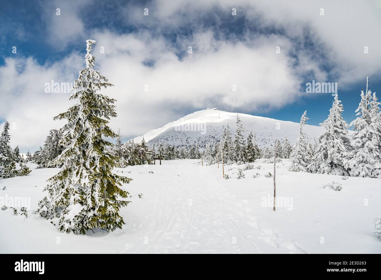 View to a hiking trail which leads to a summit of Snezka mountain, the highest Czech mountain. Located on a border with Poland. Winter picture of Stock Photo