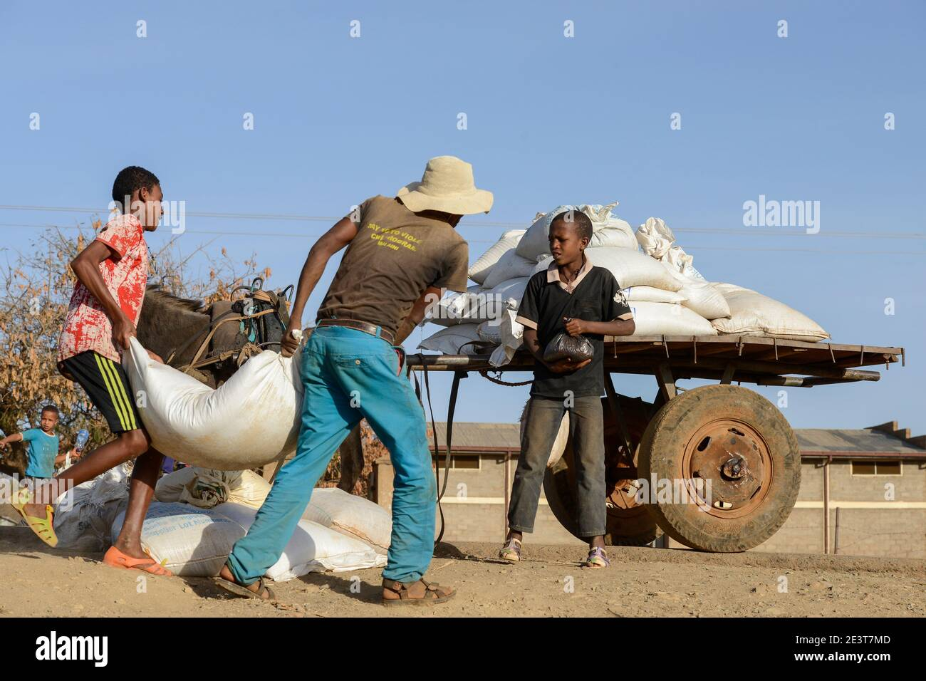 ETHIOPIA, Tigray, Shire, eritrean refugee camp May-Ayni managed by ARRA and UNHCR, WFP food distribution / AETHIOPIEN, Tigray, Shire, Fluechtlingslager May-Ayni fuer eritreische Fluechtlinge, Abholung von Nahrungsmittel Rationen des WFP Stock Photo