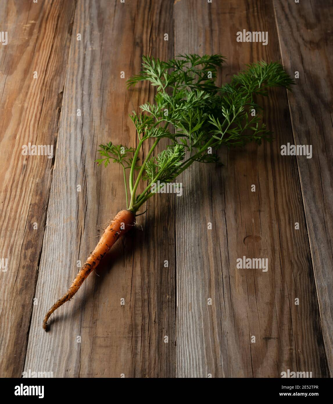 Freshly picked carrots placed in the wooden background Stock Photo