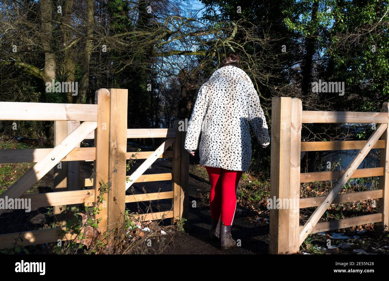 Woman in country park on a walk during lockdown in January 2021 - Reading, Berkshire, England, UK Stock Photo