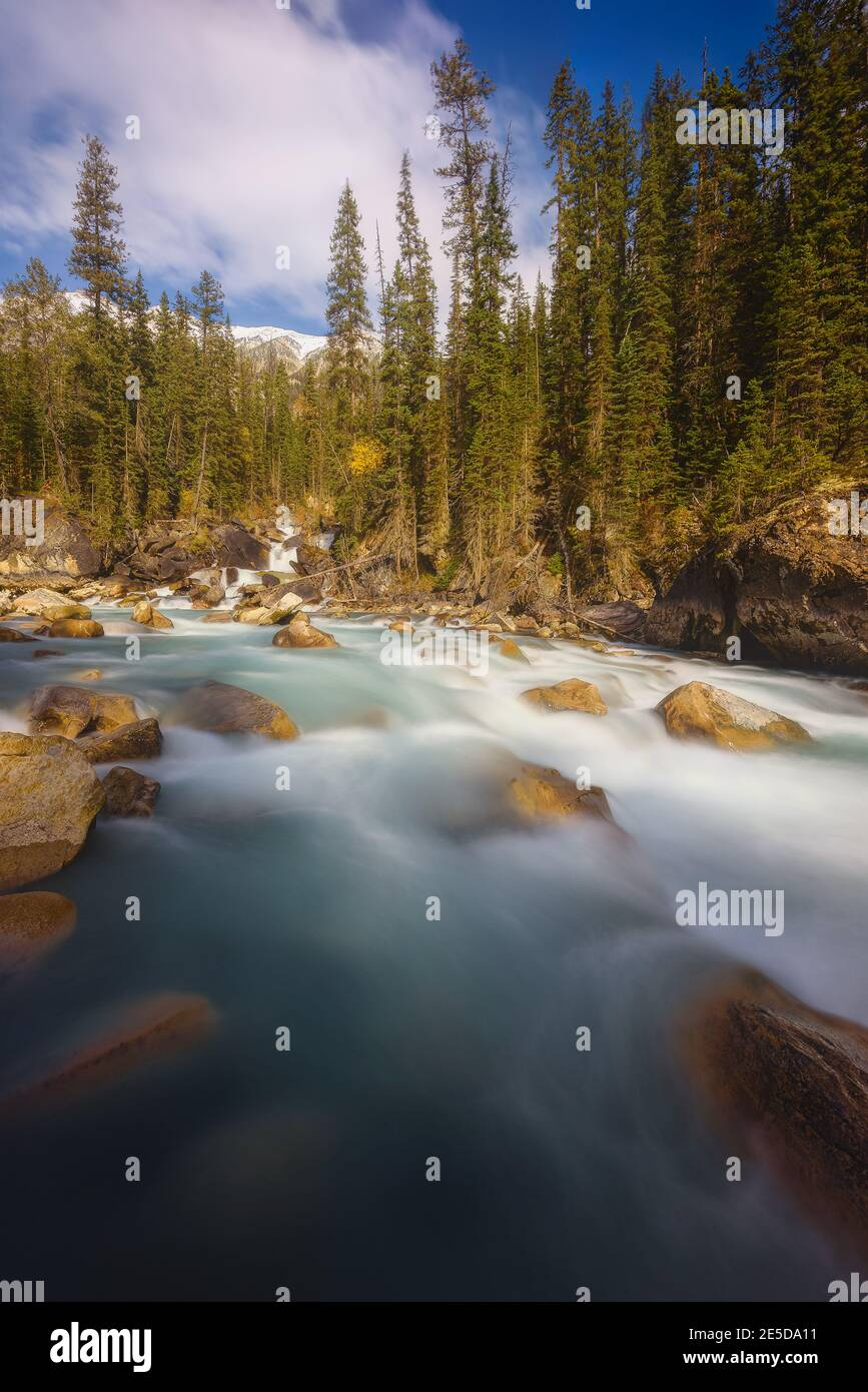 River through Yoho Valley, Yoho National Park, British Columbia, Canada Stock Photo