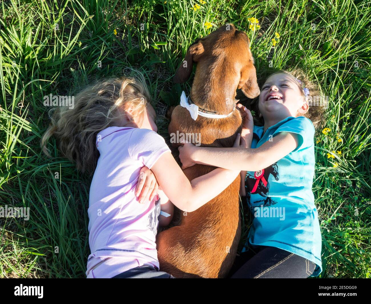 Overhead view of two girls lying on the grass cuddling their dog, Poland Stock Photo