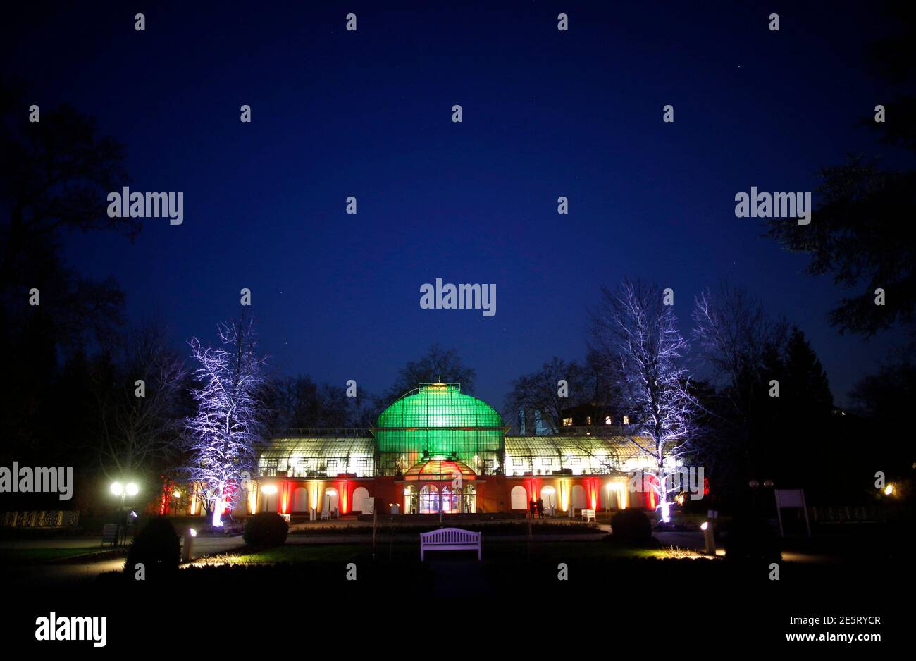 "A light installation by artist Wolfgang Flammersfeld is seen on a building at Palmengarten during the exhibition ""Winterlicht"" (winter light) in Frankfurt January 14, 2013. REUTERS/Lisi Niesner  (GERMANY - Tags: SOCIETY) Stock Photo"