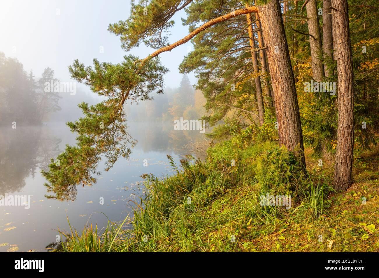 Autumn at the Masurian lake, Poland Stock Photo