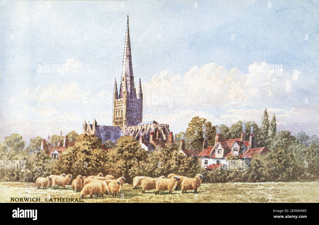 A coloured postcard of Norwich Cathedral dating from the 1920s. Stock Photo