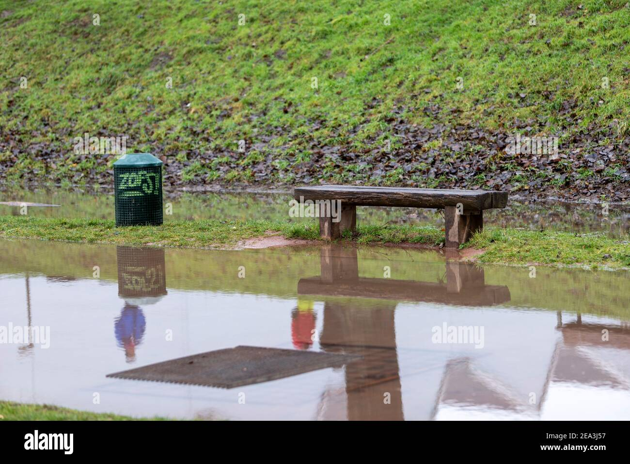 wooden bench in flooded grassland, dustbin nearby and reflection of people in water Stock Photo