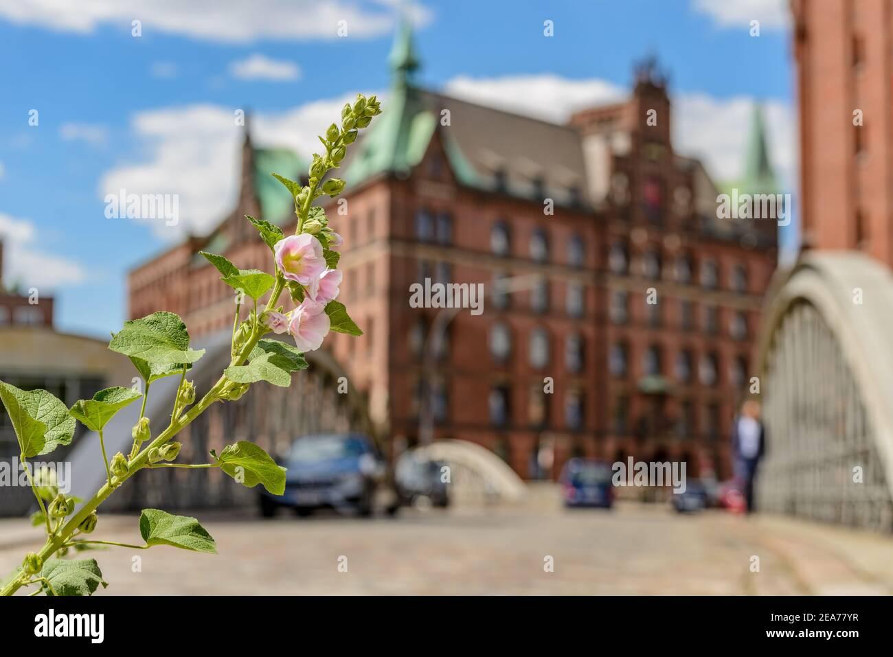 Hamburg Speicherstadt Neuerwegsbruecke with Pickhuben and Sandthorquaihof in the background Stock Photo