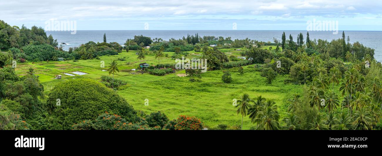 Seaside Village - Panorama of a tropical seaside village at Keanae Peninsula of Maui, as seen from Road to Hana Highway, on a cloudy day, Hawaii, USA. Stock Photo