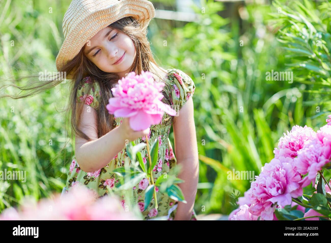 Beautiful little girl is holding a pink peony in a sunny day in the garden.  Pretty girl is wearing a fashionable patterned summer dress and straw hat Stock Photo