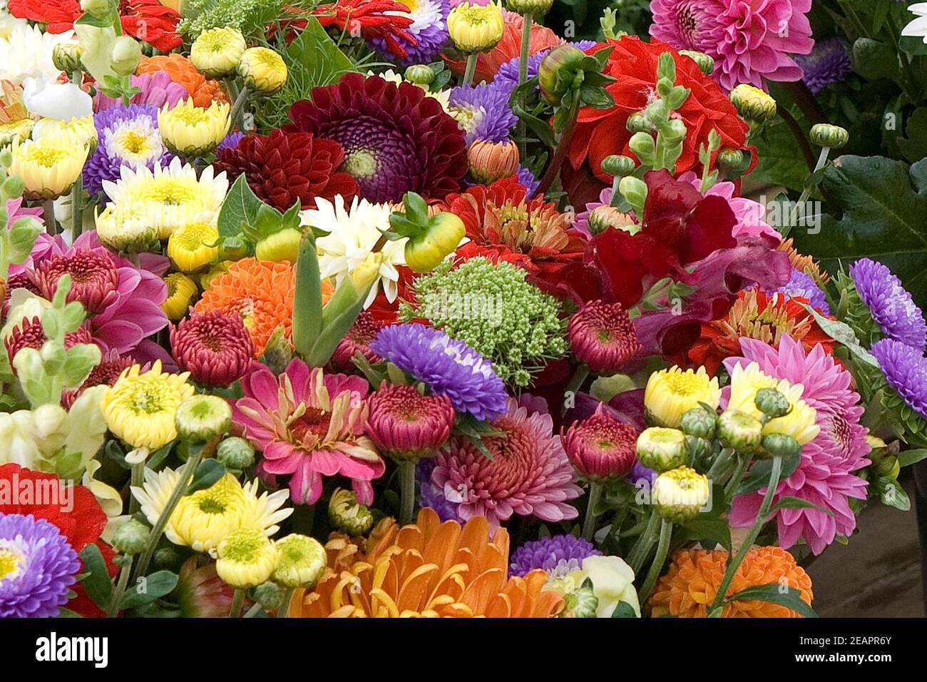 Blumenmarkt, Blumenstrauss Stock Photo
