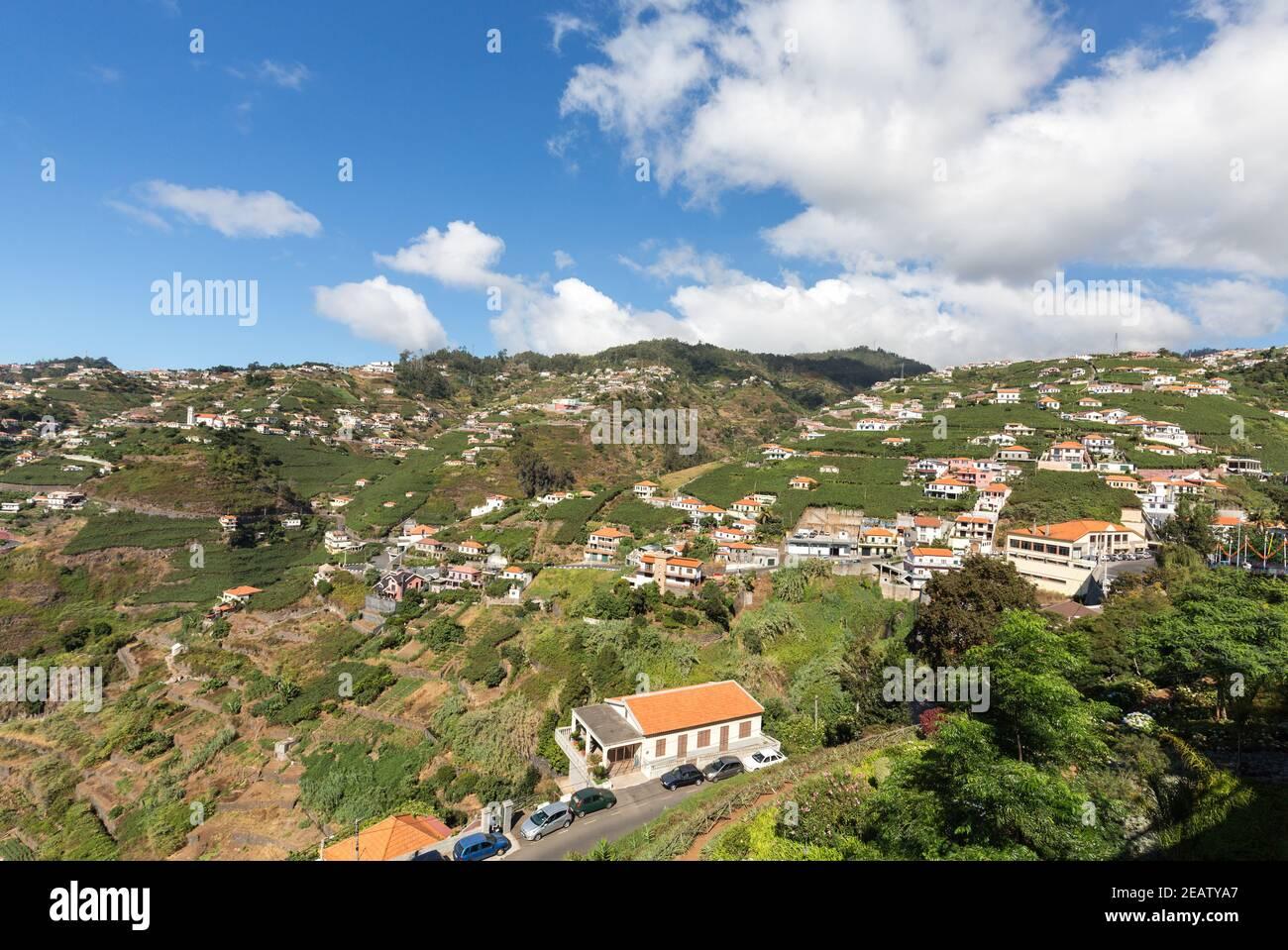 View over the vineyards of the Madeira Wine Company, Estreito de Camara de Lobos, Madeira, Portugal Stock Photo